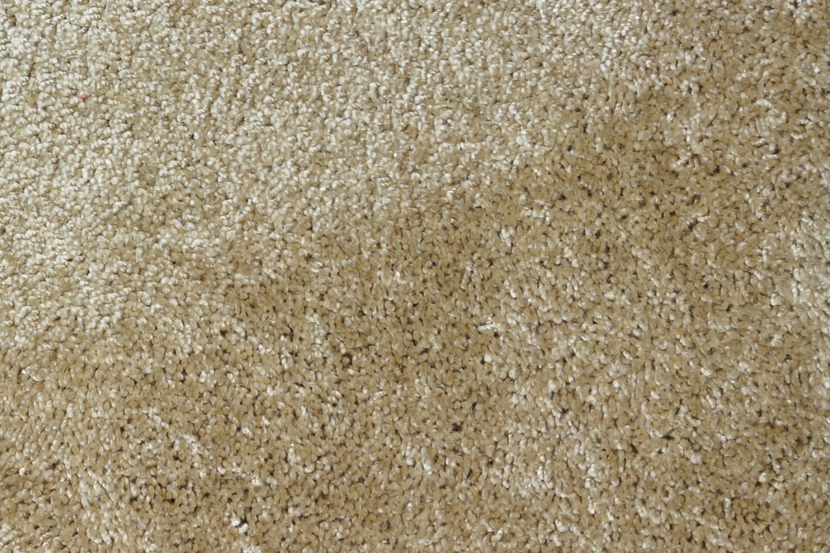 Moquette tuft e 100 polyamide p gase beige collection for Moquette motif parquet